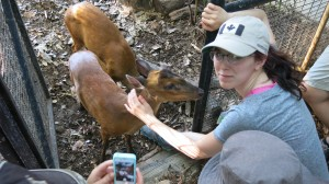 Karlie getting smoochy with the resident female barking deer