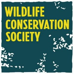 Wildlife-conservation-society.